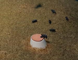 Gestaltungsbeispiel, Diorama mit Schachthals H0 und Raben
